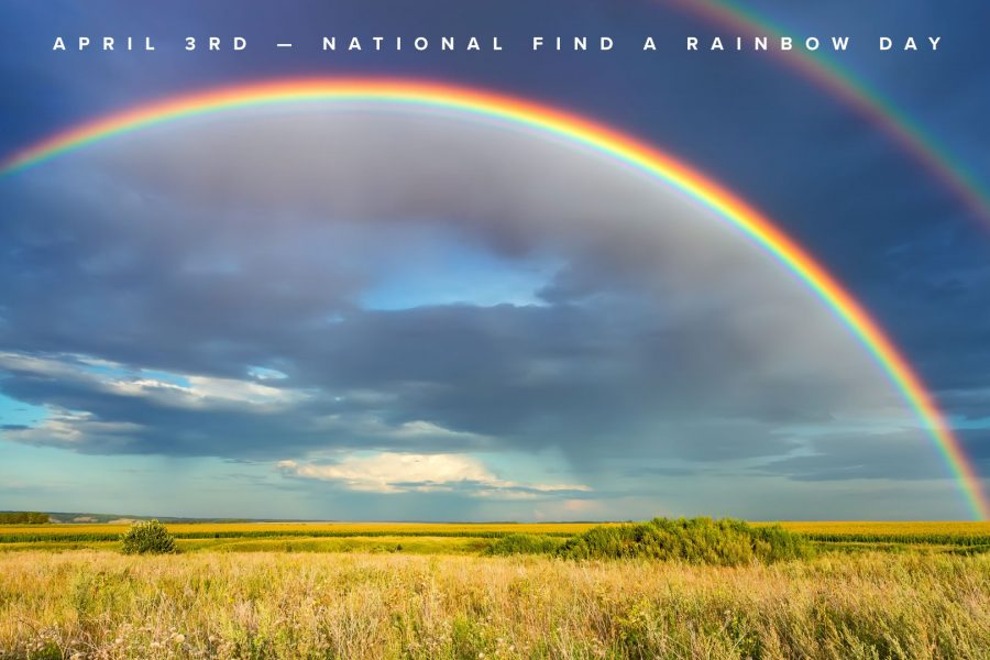 rainbow day zoom