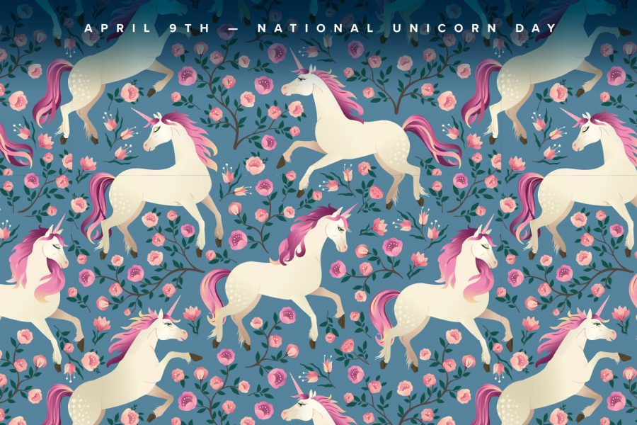 unicorn day zoom